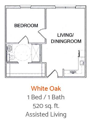 Trinity-Oaks-Pearland-White-Oak-Floor-Plan-1-Bed-1-Bath4