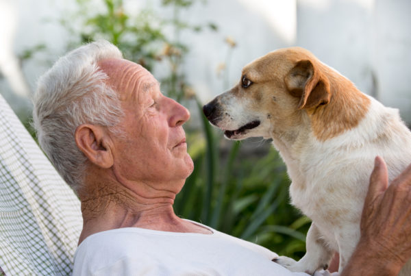 Senior Living and Fur Friend Visit